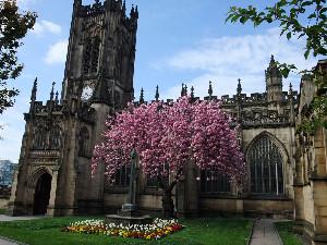 Manchester(GB)